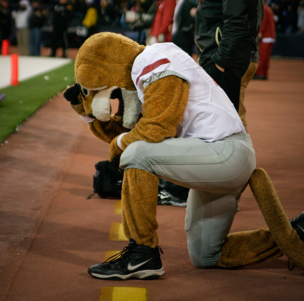*Extra* Things got so bad that even Butch the Cougar had a hard time watching.