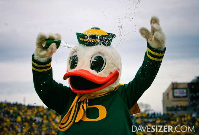The Duck mascot cools down after doing another set of pushups after a Ducks score.