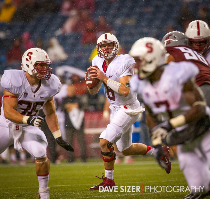 Kevin Hogan rolls out looking for a receiver.