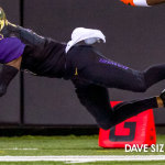 Dawgs pummel Beavers