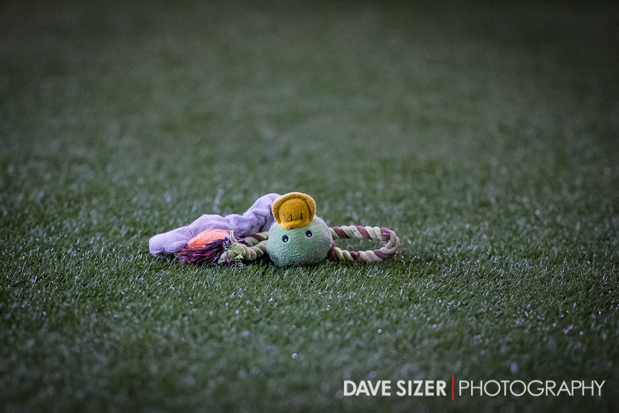 This was the only Duck that didn't make it into the end zone on this night.