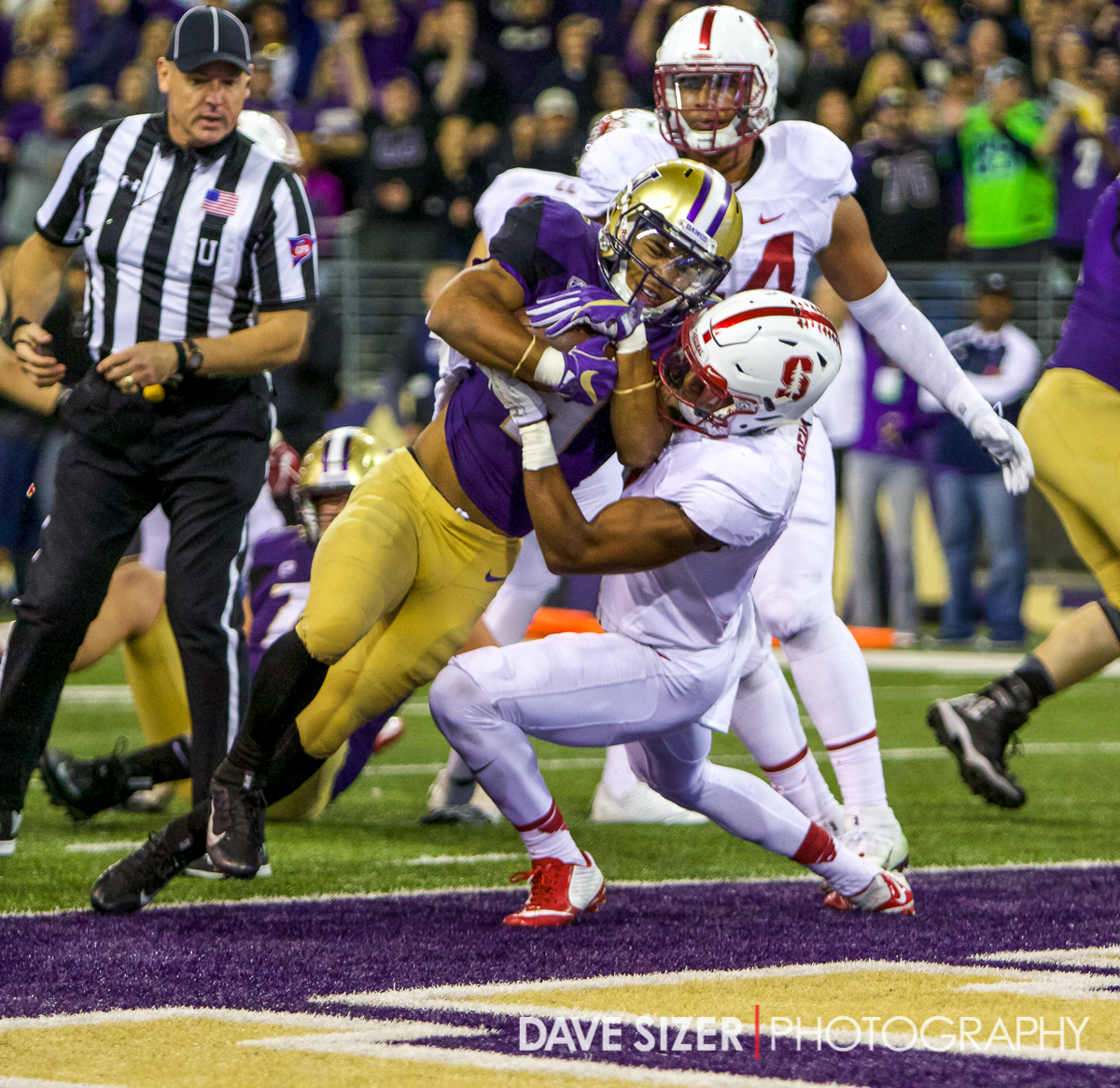Myles Gaskin plows into the end zone.